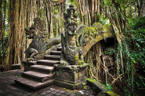 Monkey Forest w Ubud (fot. Fotolia)