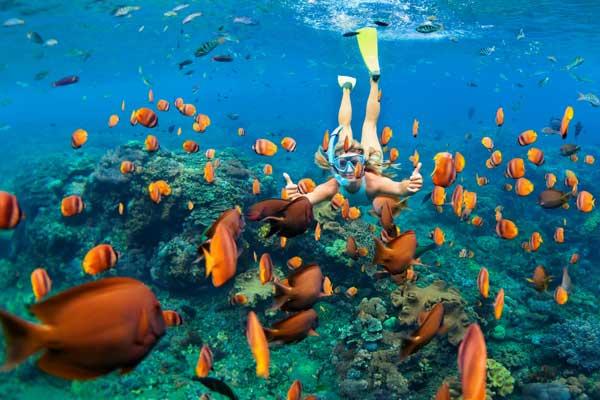 Ciepła woda zachęca do nurkowania (fot. Fotolia)