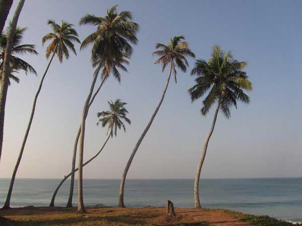 Ocean to doskonałe miejsce na codzienną medytację, fot. Issa Tifaret